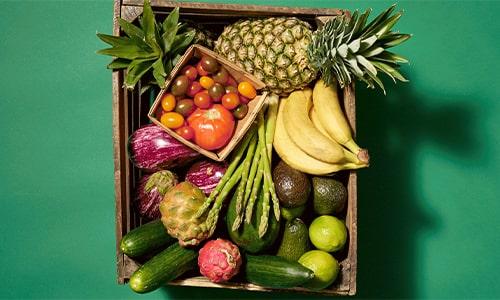 واردات میوه