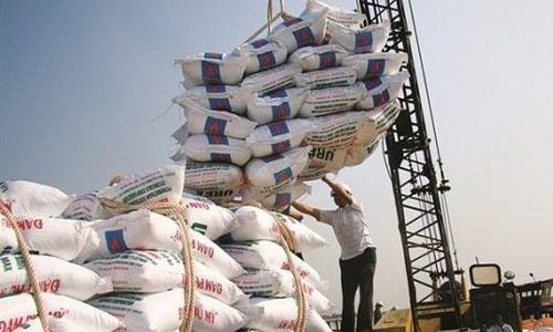 ترخیص برنج از گمرک